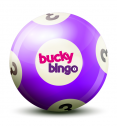 Bucky Bingo Review
